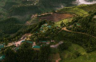 Gorilla Safari Lodge (2 of 15) (website)