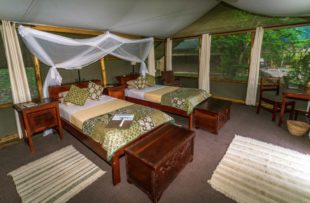 Ishasha Wilderness Camp tent (website) (1)