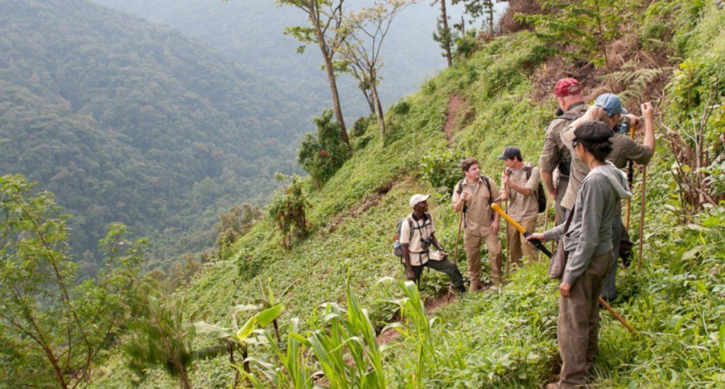 NBGL Hiking (website)