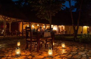 Primate Lodge-Dinner setting (website)
